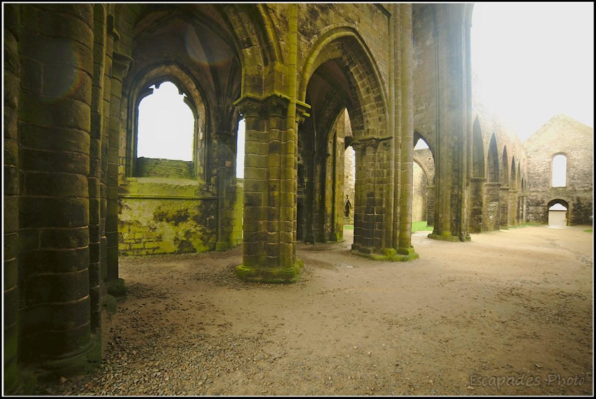 Voûtes gothiques ruines Saint-Mathieu