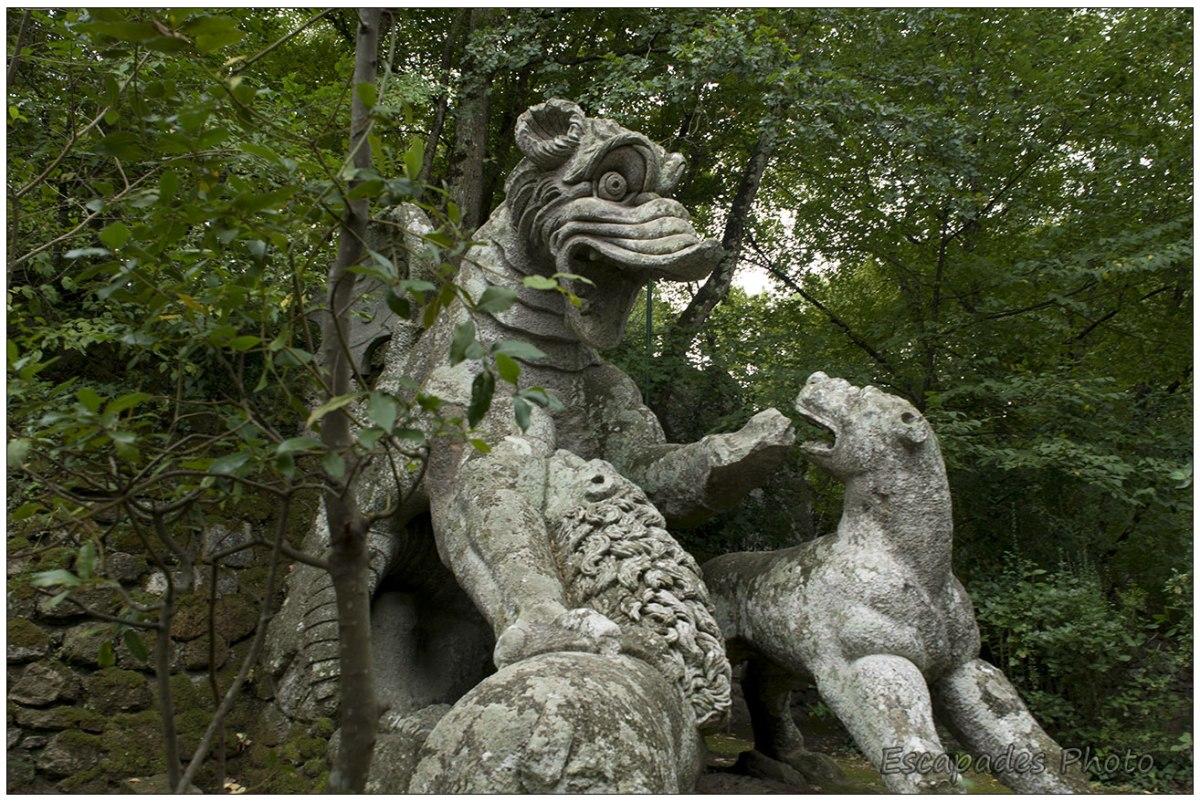 Un dragon attaqué par une lionne