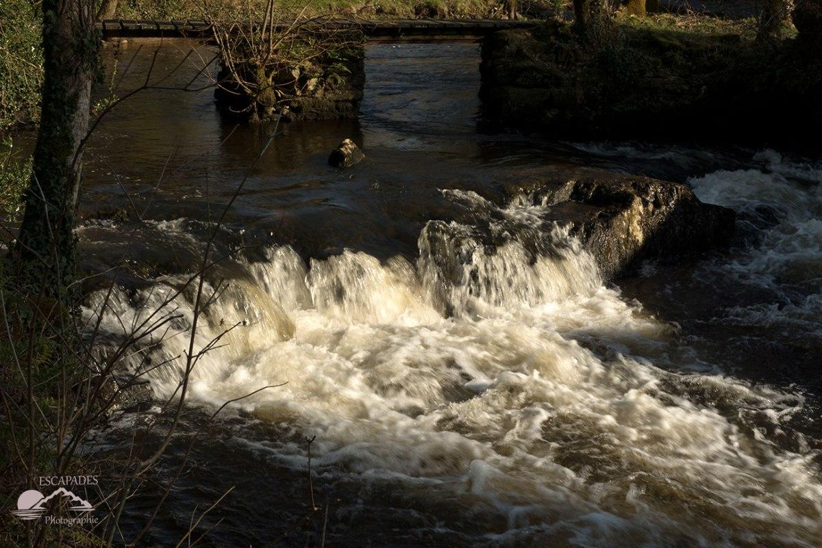 Moulin du Fourden, les eaux tumultueuses du bief