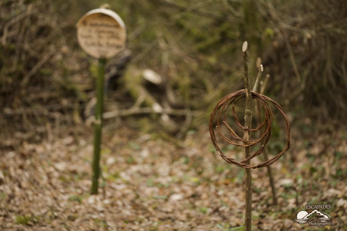 Jeux des anneaux au sentier des moulins