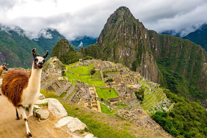 Perú experiencia