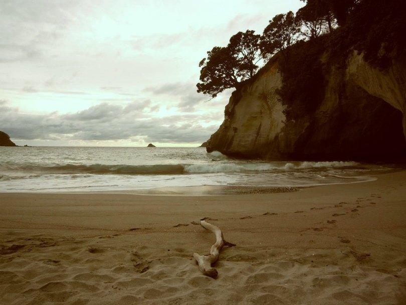 Neuseeland: Coromandel Halbinsel