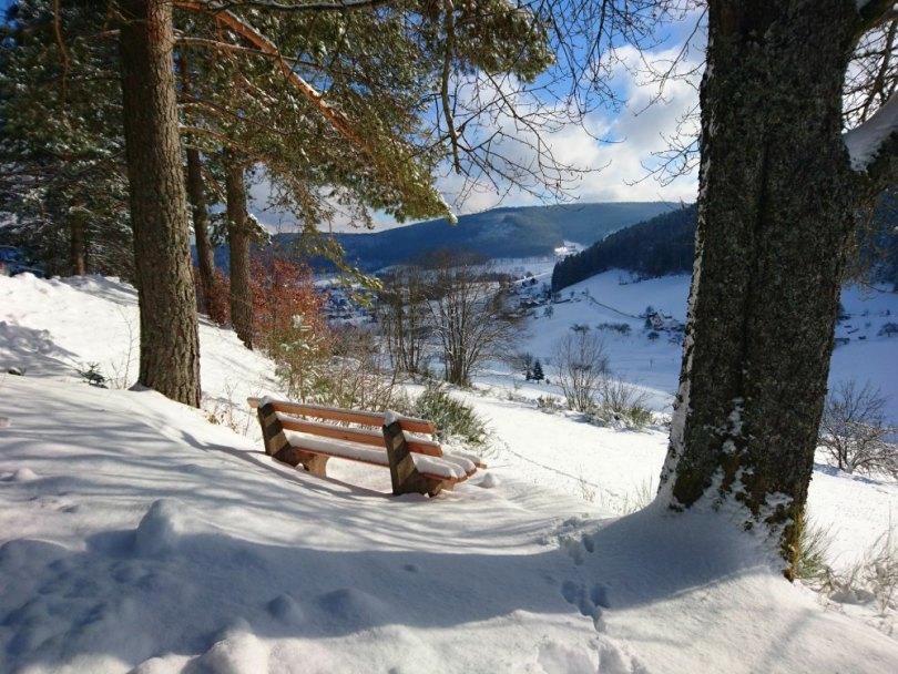 Winterwanderung im Schwarzwald