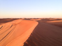 """The desert fills men's hearts with visions"" (Paulo Coelho) [somewhere in the desert, Dubai, UAE]."