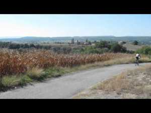 Biking Across Provence: I Join a Butterfield & Robinson's Tour