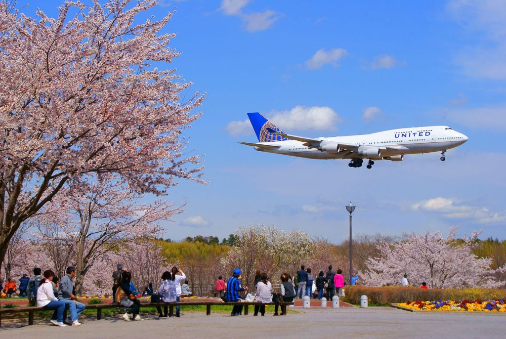 5 Awesome Things To Do in Narita