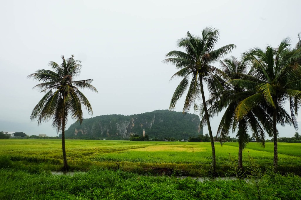 View of Gunung Keriang from the paddy fields