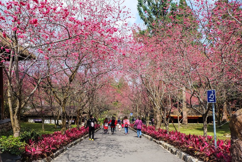 Must-Visit Tourist Spots in Central Taiwan