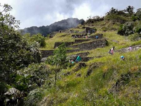 La escalinata para llegar a la cascada tiene un aire de ruinas indígenas. oto: CP