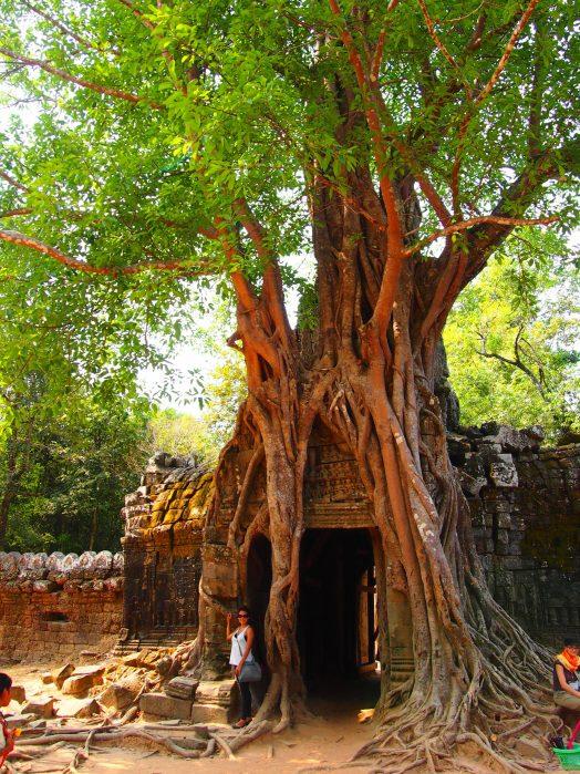 Angkor la ciudad templo | Guía completa de viaje