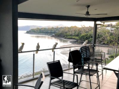 Hamilton Island, Australia, Whitsundays