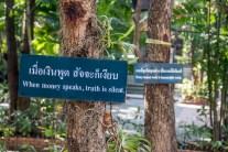 Chiang Mai-1119