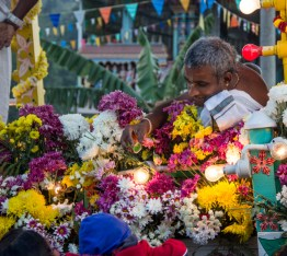 Handing out fruits ...