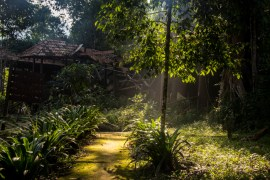 Last light at my campsite