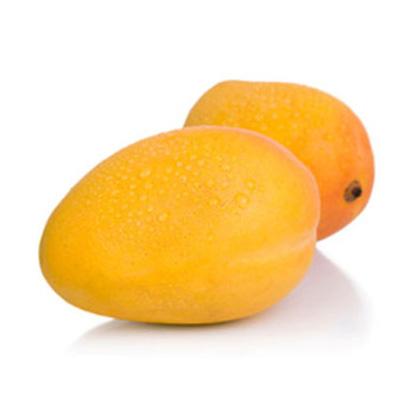 mango-comun