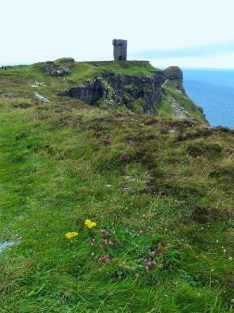 Escarolota - 10 Cliffs of Moher 2016 (4)b