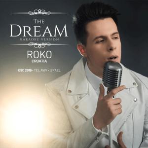 V 19 HR - Roko Blažević - The Dream