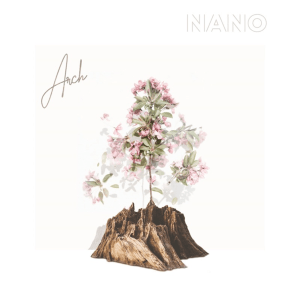 Nano - Arch