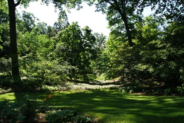 U. National Arboretum In Washington . Eschmidt-pa
