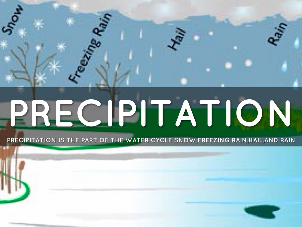 Precipitation Water Cycle Definition Examples
