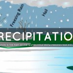 Precipitation Water Cycle