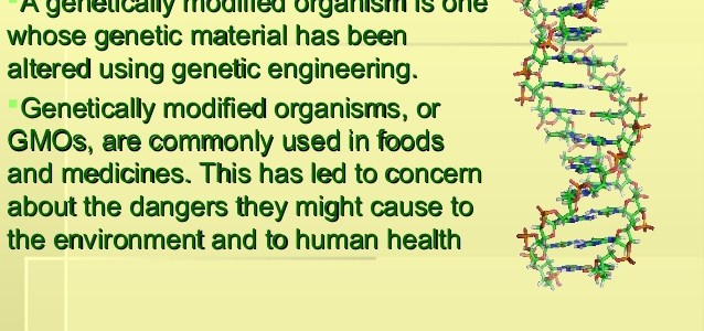 What is GMO: Definition, Beneficial, facts, Check Here - Eschool