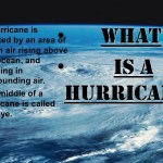 The middle of a hurricane is called the eye.