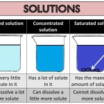 What is Concentrated Solution