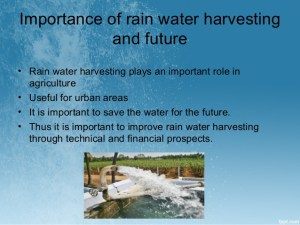 Why is rain important