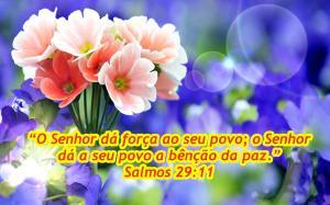 sidneiar-mensagemdevida-wallpaper-salmos-29-11