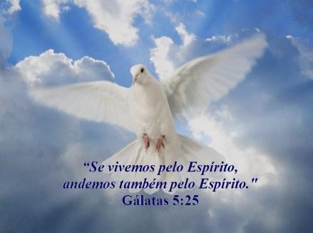 ser crsitão_santificação_escola_biblica_online_04