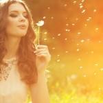 Lei para ser feliz: Inteligência Espiritual