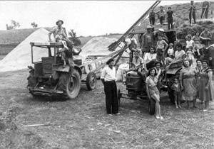 Moisson chez les Casagrande à Saubens (Haute-Garonne), fin des années 50. © EDITALIE.jpg