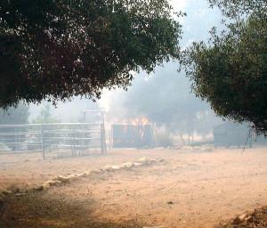 Fire burns around my yard.