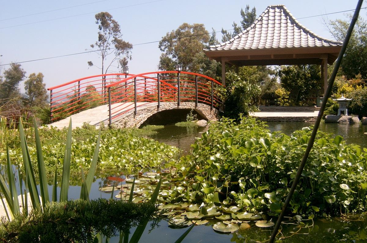 Memories Of Pikake Gardens Escondido Grapevine