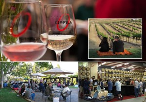 Orfila Vineyards & Winery presents Tunes on the Terrace.