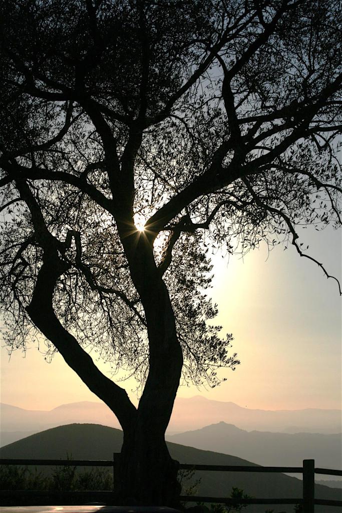 "Honorable mention - ""Double Peak Sunrise"" byMark Roland."