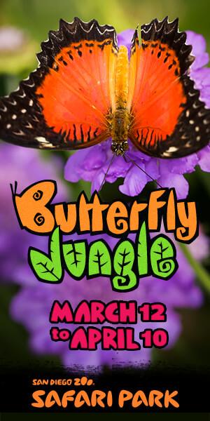 park_butterfly_jungle_300x600