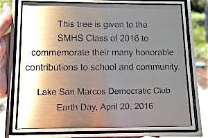 The plaque, the plaque.