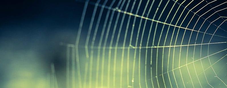 lições da aranha para escritores