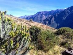 Vale do Colca