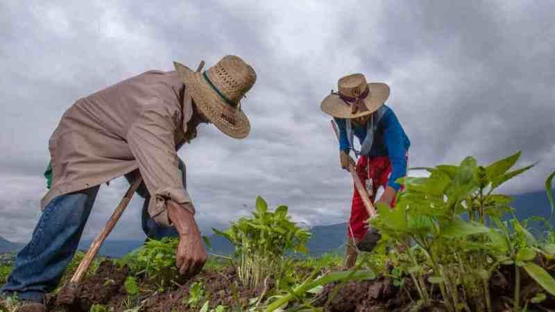 MÉXICO, EU Y CANADÁ TRABAJAN PARA ENFRENTAR EFECTOS DEL CAMBIO CLIMÁTICO EN LA AGRICULTURA