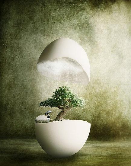 micro_huevo