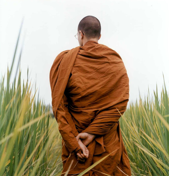a93944d788 Why do monks wear robes of different colors  - Hermit Scriptures