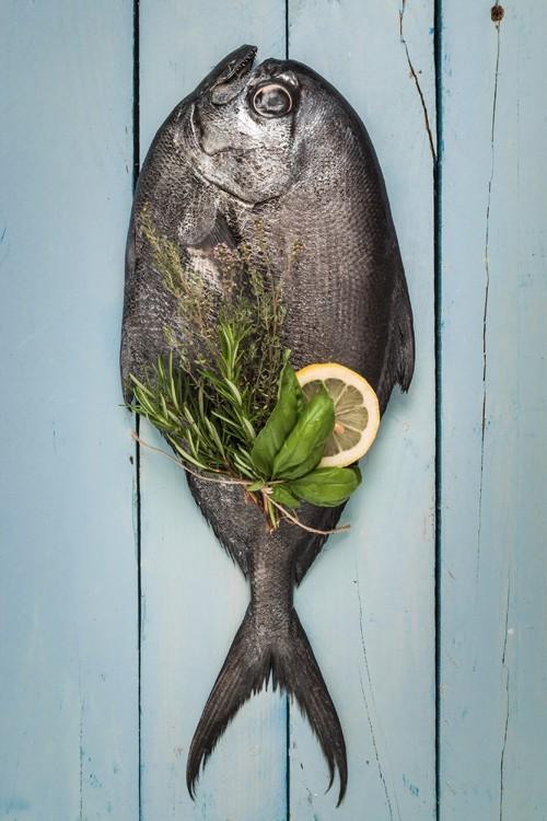 pescado rev