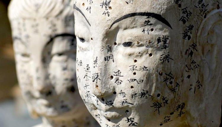 Por qué estudiar Medicina China
