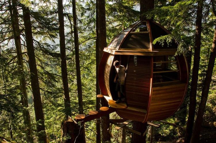 Las 10 mejores Casas en el Árbol - La Escuela del Bosque