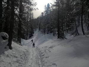Salita con gli Sci d' Alpinismo per il Sentiero CAI per il Nuvolau