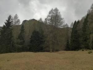 Monte Zervoi visto dai Palughet