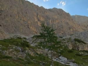 Le pareti Dolomitiche della Cima Undici, Elferkofel